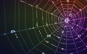 Amanda Votto - Blog - Detangling The Web